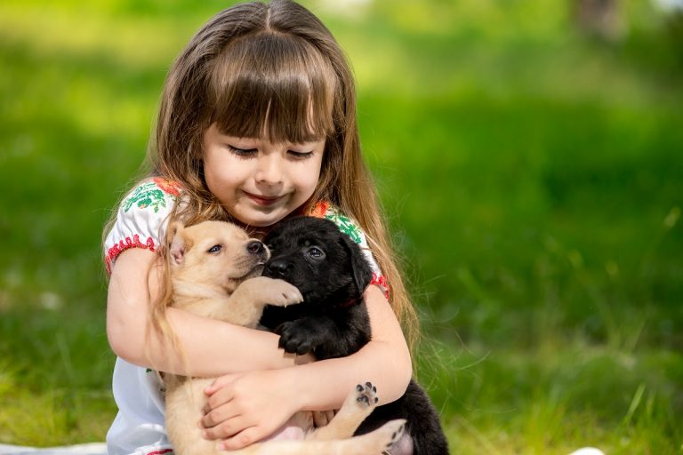 Best Small Pets for Kids